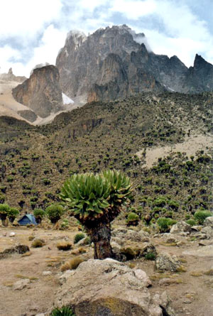 Beautiful Mt. Kenya